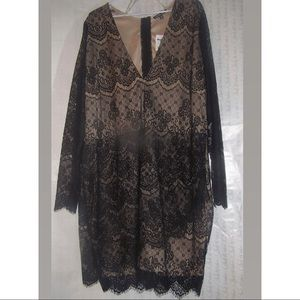 Charlotte Russe black lace with nude lining , 3x